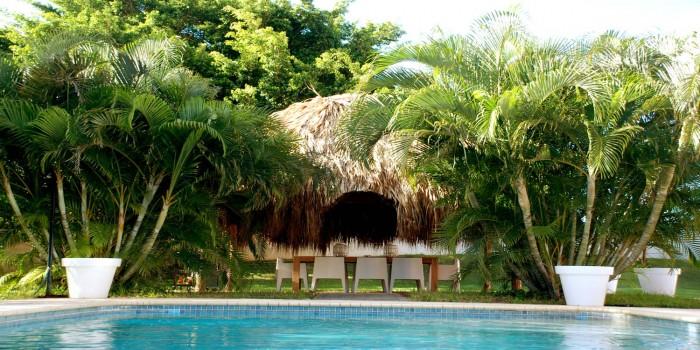 Zwembad met palapa